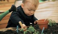 plantning i museumshaven_kbh museum